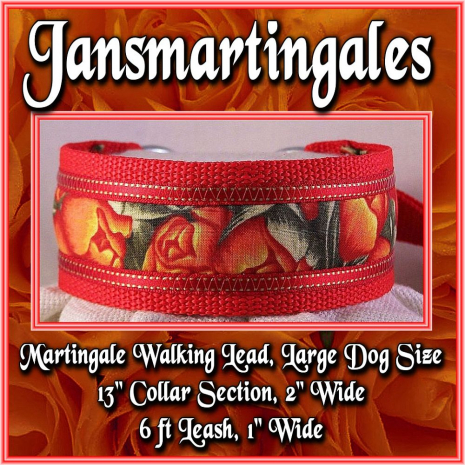 martingale walking lead large dog size