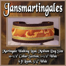 martingale walking lead,  medium dog size